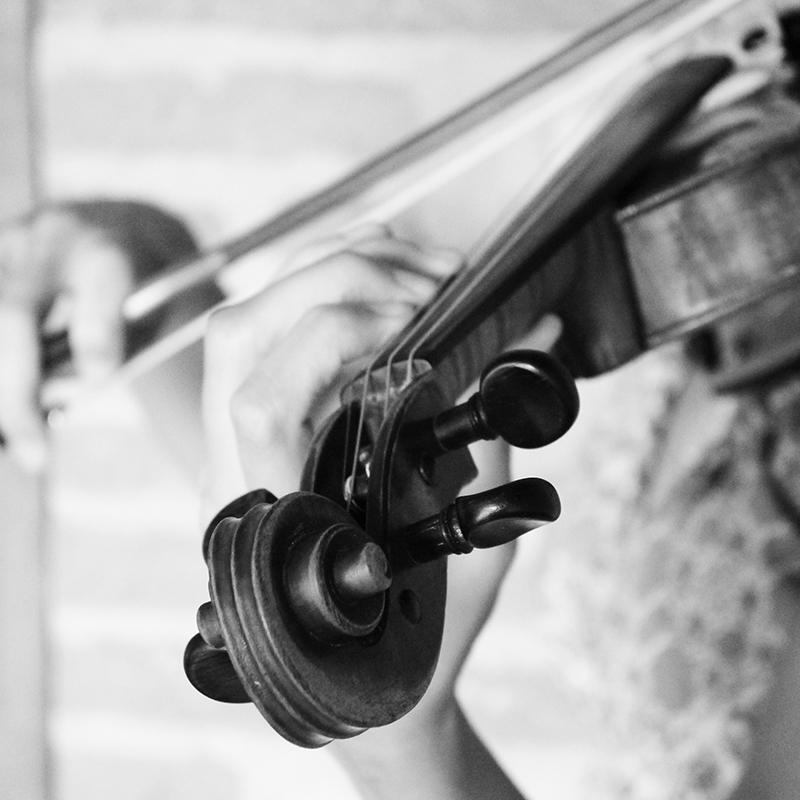 Cours de violon Tarn - Dlavieenmusique