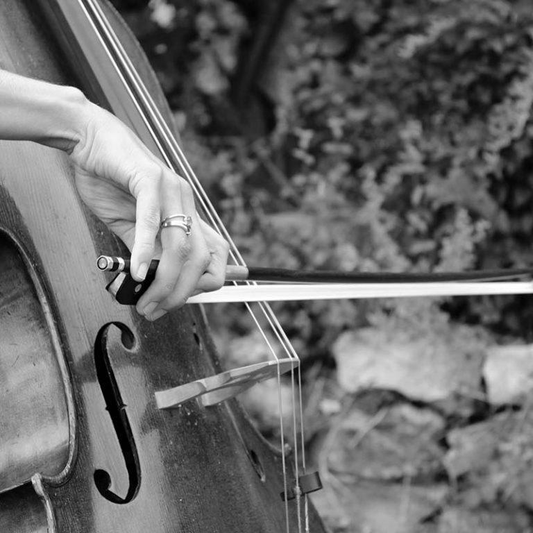 Cours de violon dans le Tarn