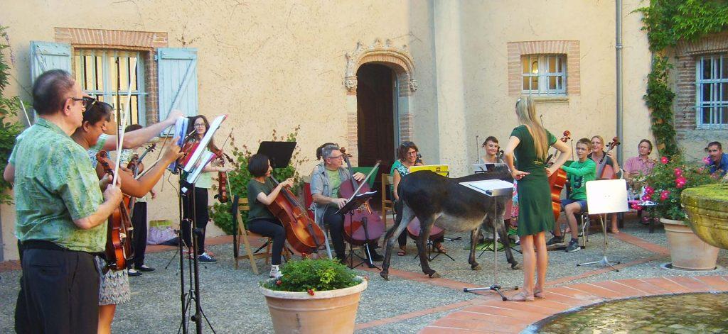 Formation en concert - Association D'la vie en musique d